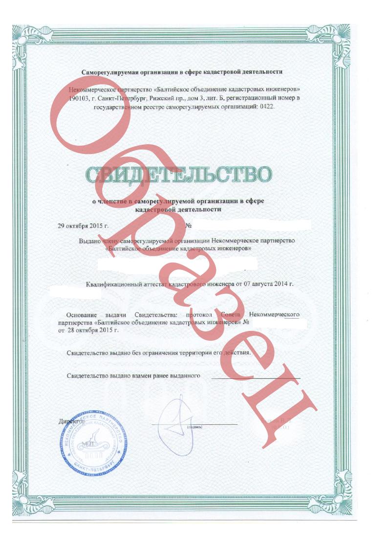 Кадастровый паспорт с экспликацией и поэтажным планом